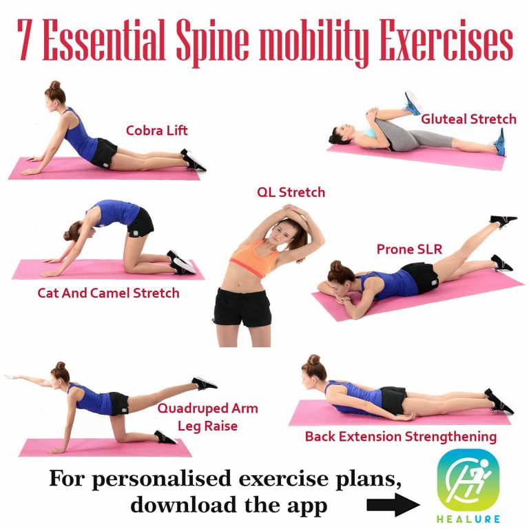 7 Essential Spine mobility Exercises